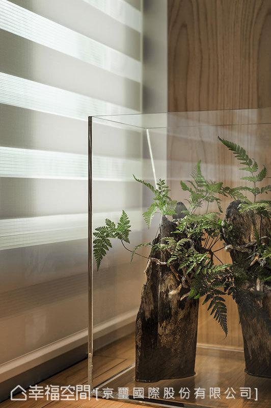流動的光影不僅溫暖了居者心緒,也讓綠意有了飽滿的幸福能量。