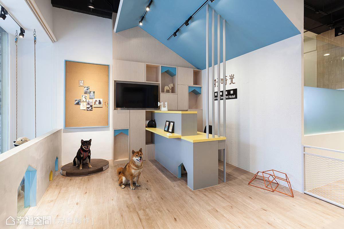 設計師馬愷君以「家」作為本案的設計主軸,讓寶貝們在接待區的天花、展示櫃與小小通道上,都可以看見家的元素。