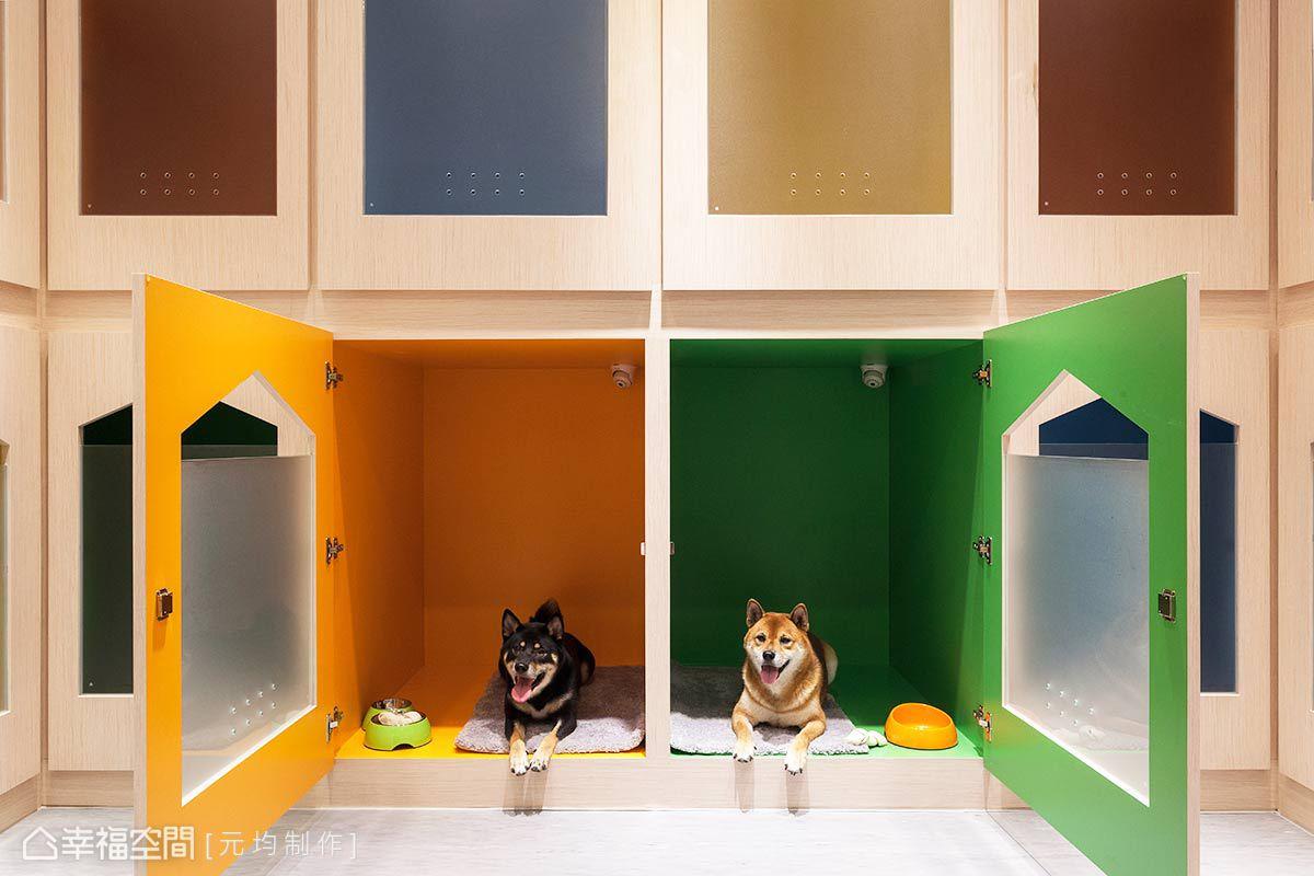 120公分以上的空間尺度,讓毛小孩擁有更舒適的臥眠空間,上方更加裝夜視功能的監視器,更讓狗爸媽放心。